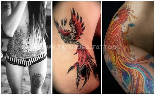 50 Ideas De Tatuajes De Ave Fenix Foto Y Significado